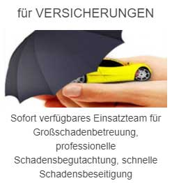 smart_repair-offenbach